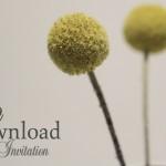 Free Printable Grey & Yellow Invitation Suite by Brancoprata