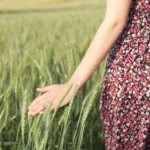 Fields of Gold Engagement Shoot