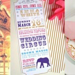 Hen Party Theme: Circus