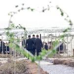 Real Wedding at Grootvlei Guest Farm {Ingrid & Denzil}