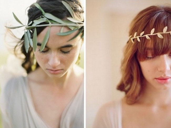 Olive Leaf Crowns