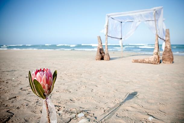 CampE005 Southboundbride Die Walskipper Monica Dart Rustic Beach Wedding Driftwood Arch