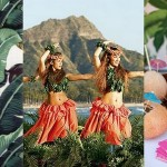 Hen Party Theme: Tropical Fever