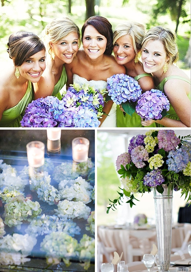 Wedding Flowers With Hydrangea : Hydrangea wedding flowers