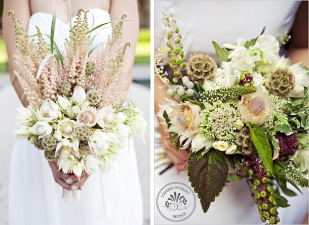 southboundbride-blushing-bride-proteas-004 – SouthBound Bride