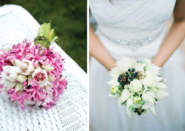 Blushing Bride Proteas