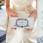 Colour Story: Toile & Rose