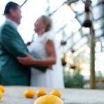 Organic Farm-Style Wedding at Babylonstoren by Monica Dart {Allie & Carl}