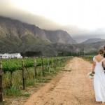 Peonies & Proteas Holden Manz Wedding by Nikki Meyer & Creation Events {Nina & Bernd}