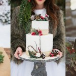 15 Rustic Winter Wedding Cakes