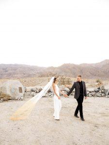 Ombre-Wedding-Veil