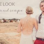 Get the Look: Protea Landscape