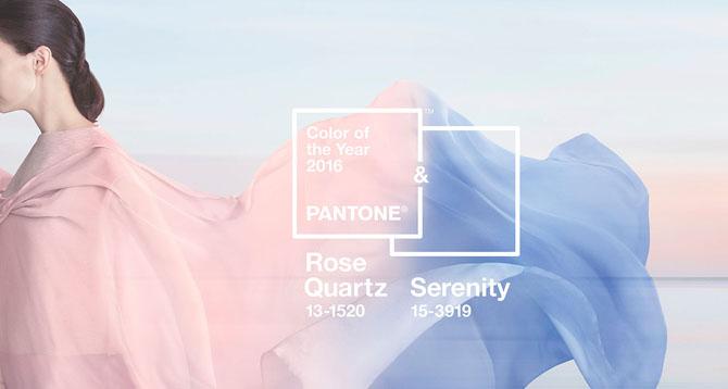 PANTONE header