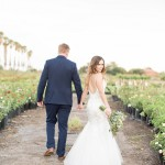 Romantic Rose Farm Wedding by Jack and Jane Photography
