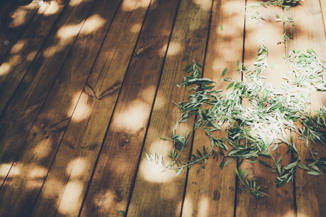 Eucalyptus Confetti   Image: Fiona Clair