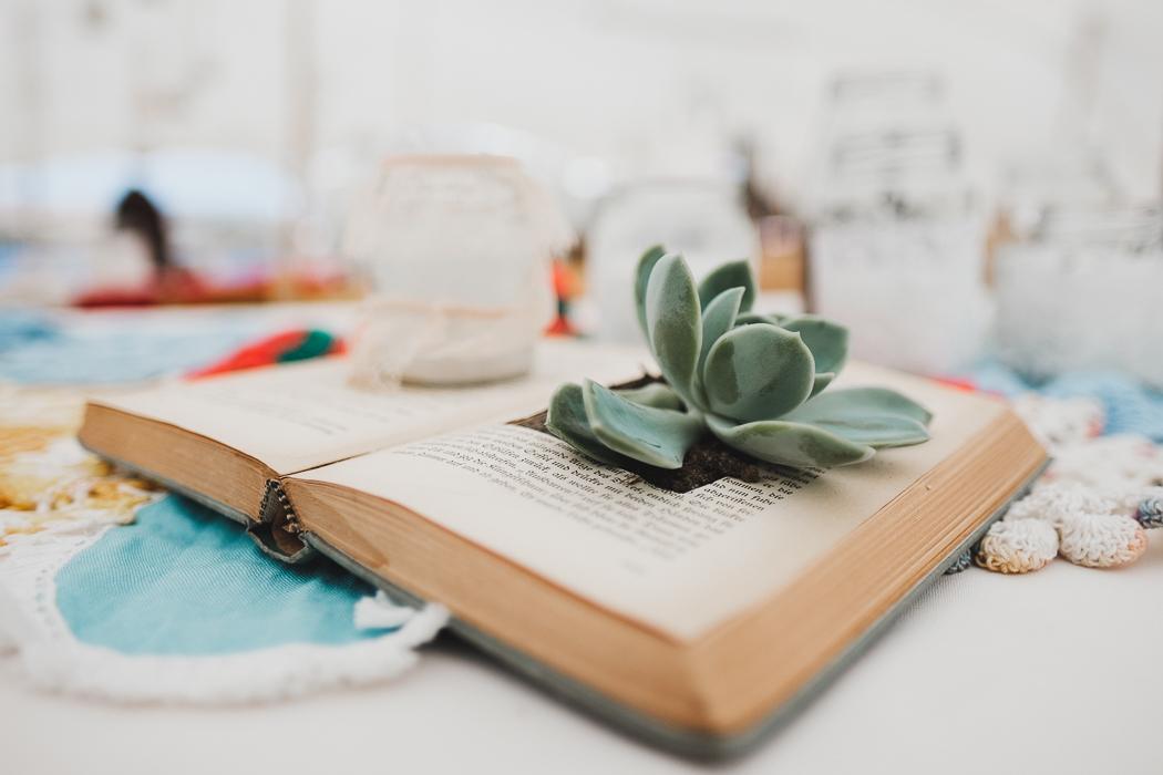 Succulent in Book Centerpiece   Credit: Bold As Love