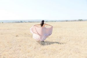 Pink Silver Swallow Dress | Image: Corette Faux