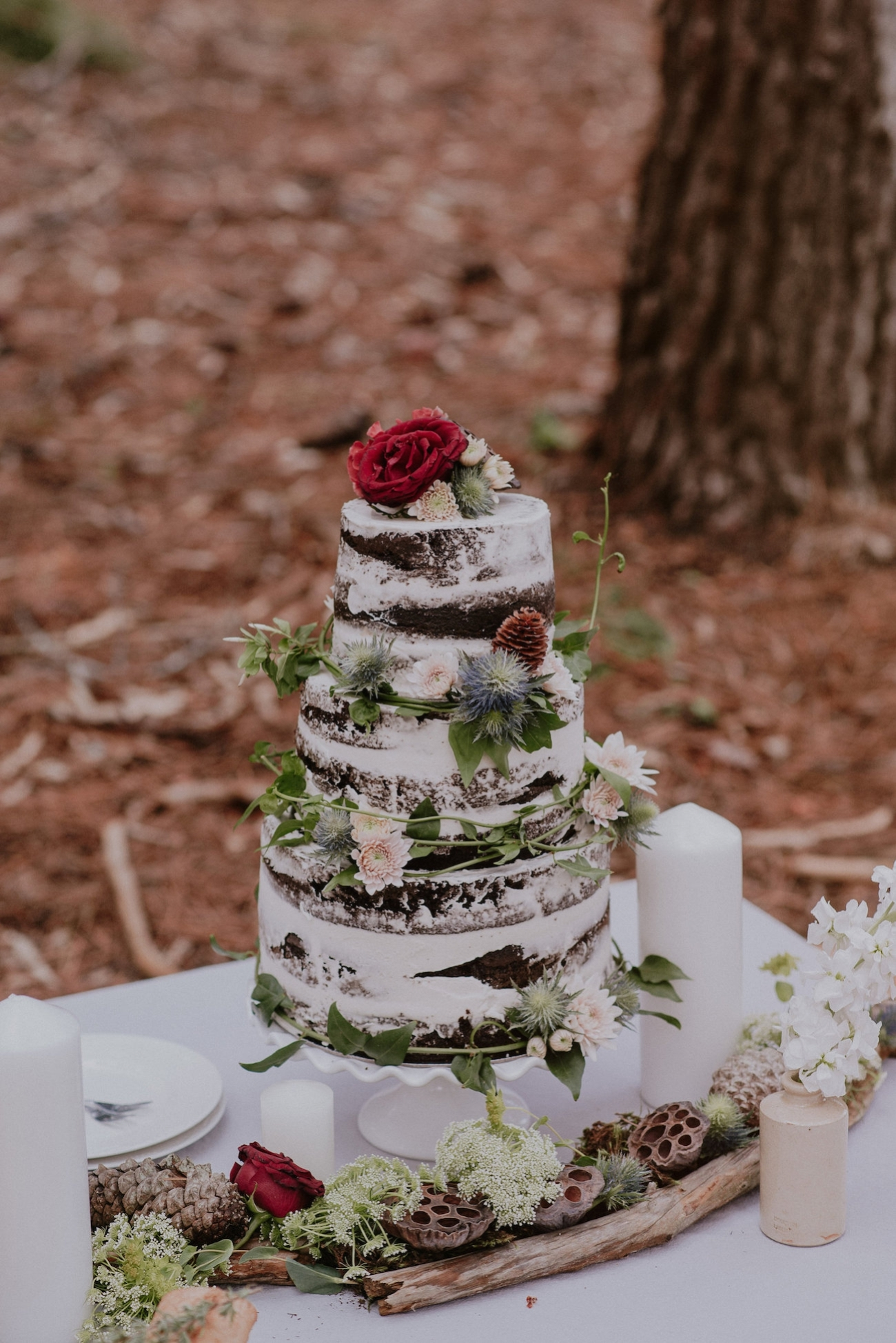 Chocolate Naked Cake | Credit: Lad & Lass Photography