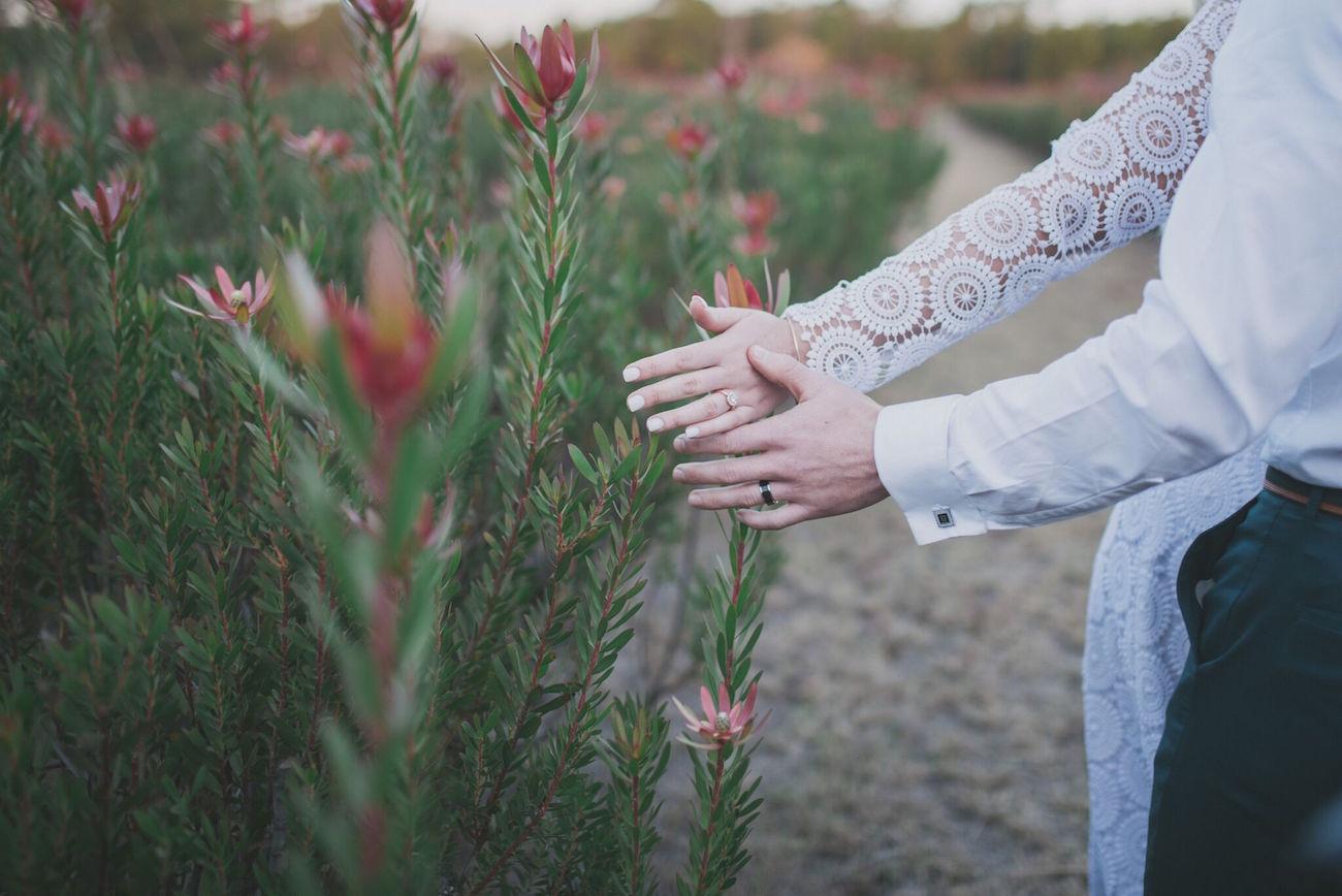 Protea Farm Wedding | Credit: Vicky Bergallo