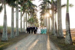 Tropical Chic Wedding Party | Credit: Oh Happy Day & Dane Peterson