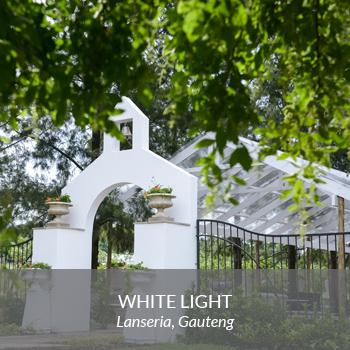 WhiteLight FI