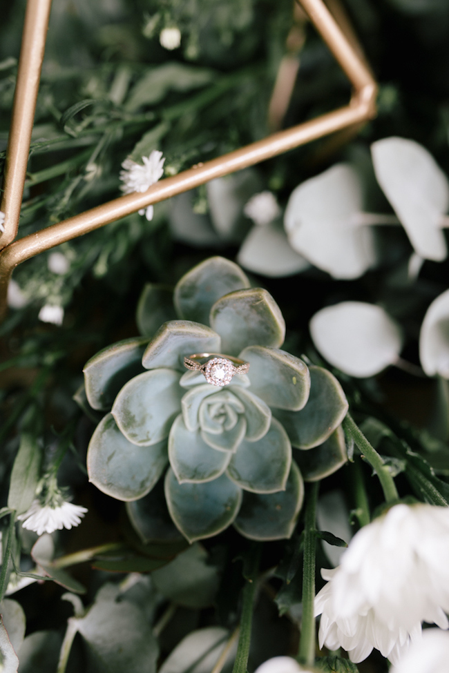 Succulent Ring Shot | Credit: Anike Benade