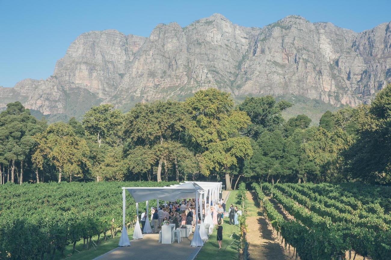 Molenvliet Vineyard Wedding Reception | Credit: Shanna Jones