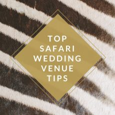 How to Choose a Safari Wedding Venue with Absolute Perfection