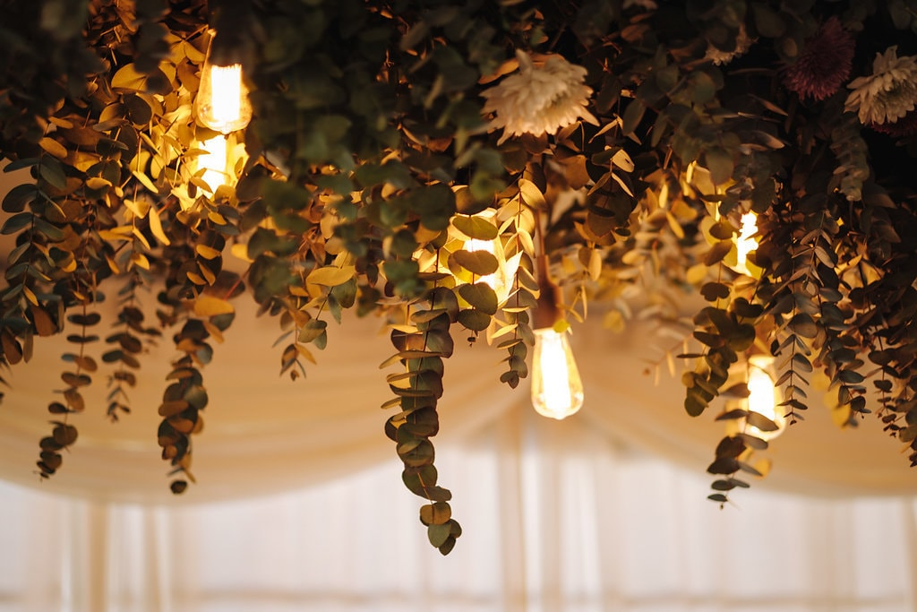 Edison Bulbs & Eucalyptus Leaves | Image: The Shank Tank