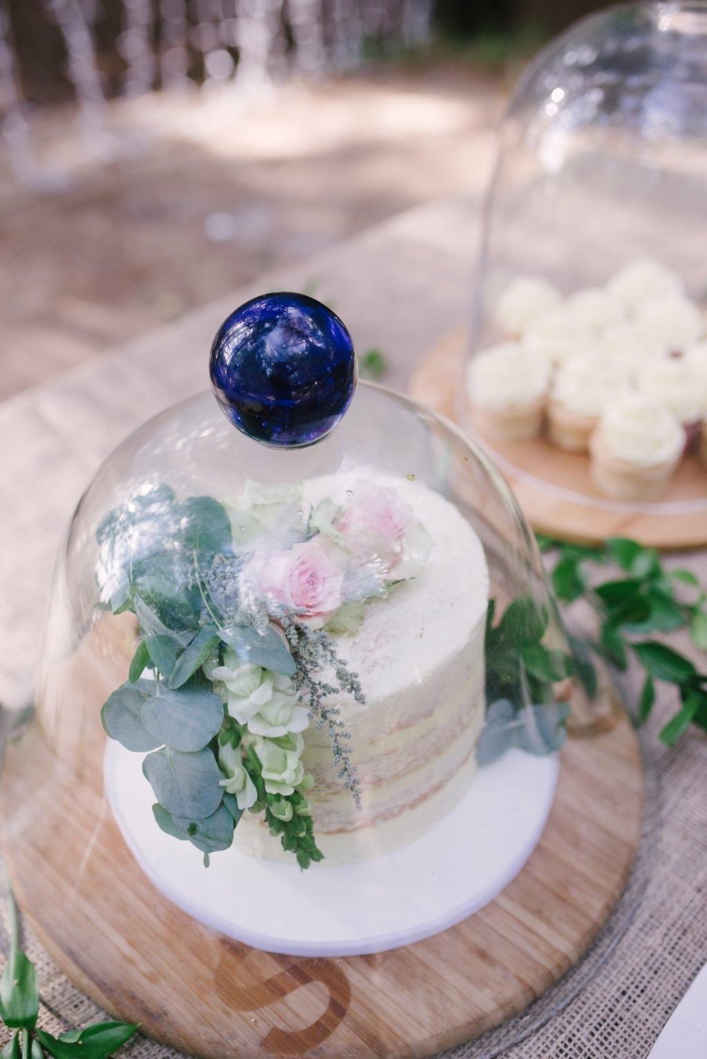 Naked Cake Under Glass Dome | Image: Cheryl McEwan
